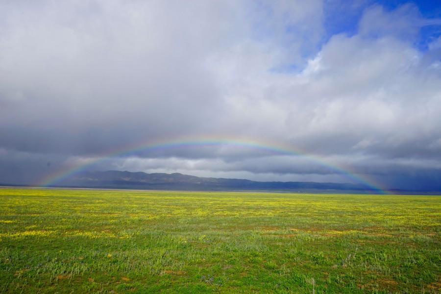 Rainbow over Carrizo Plain, March 2015